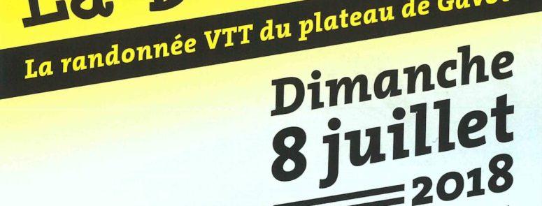 La Bellicime Rando VTT Thollon juin 18