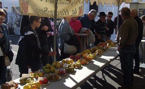 Fête de la Pomme Saint Paul 14/10